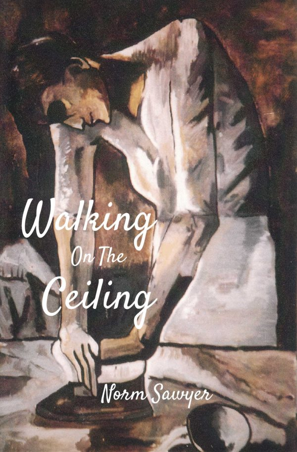 Walking On The Ceiling Book Cover